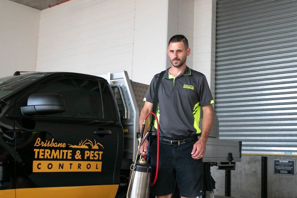 termite control solutions for residential home