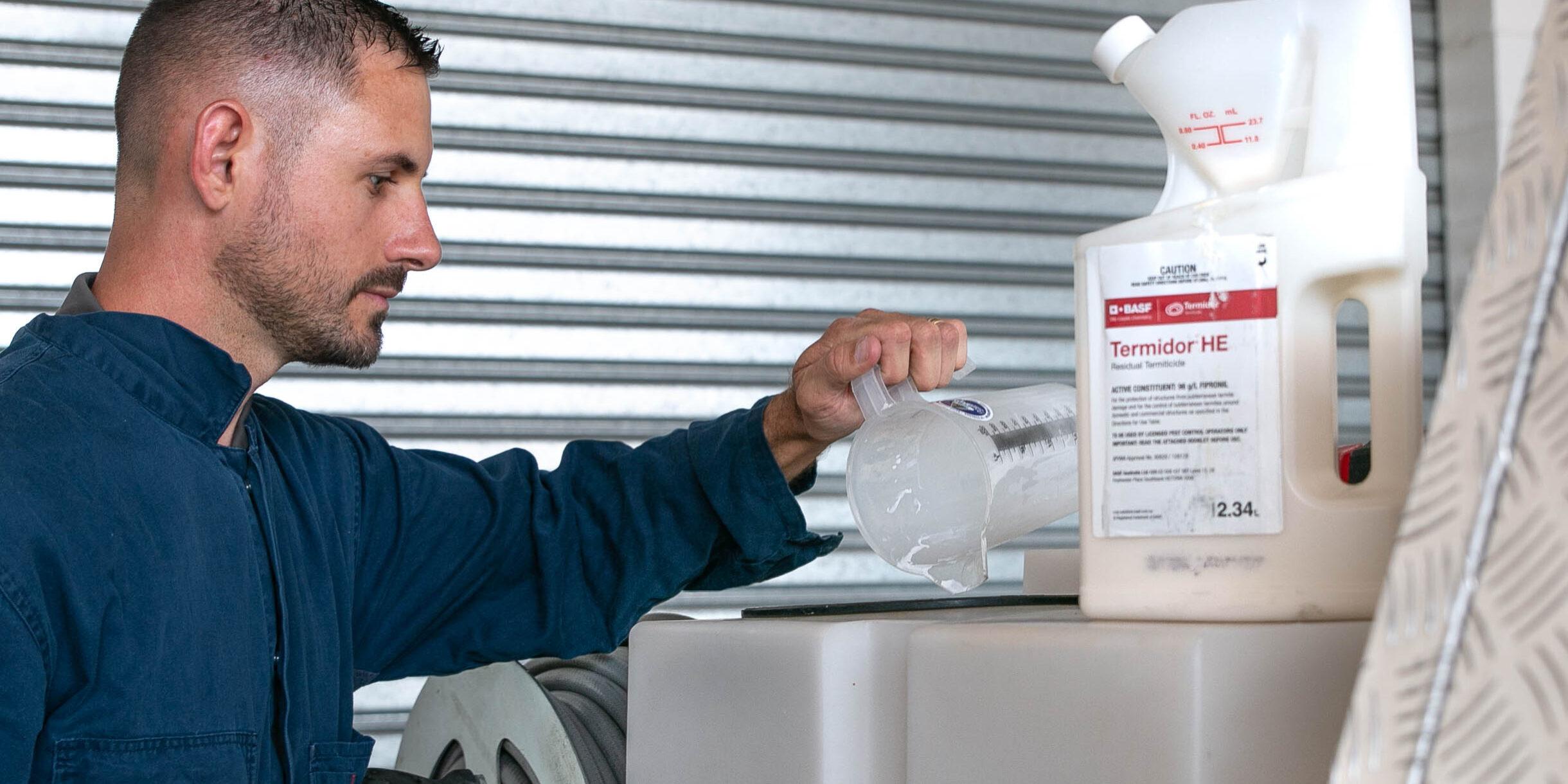 Termite Treatment Options Brisbane